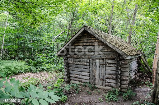 Abandoned log cabin in the woods