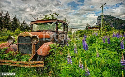 istock Abandoned Old Car in Purple Lupine Field 623996568