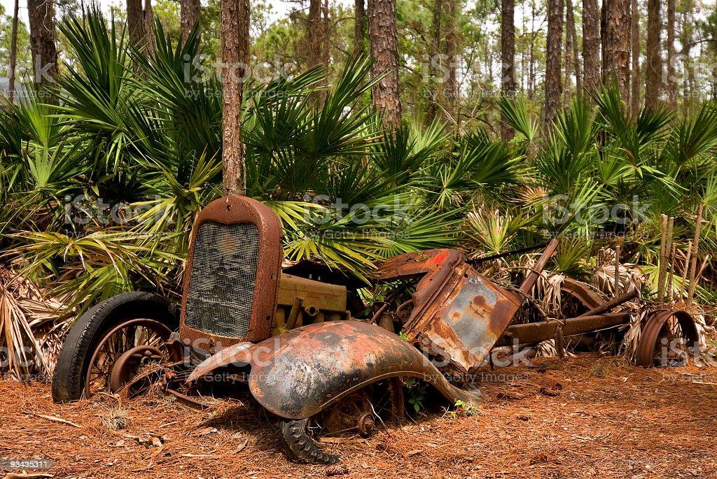 Verlassenes altes Auto in Florida-Nationalforst Lizenzfreies stock-foto