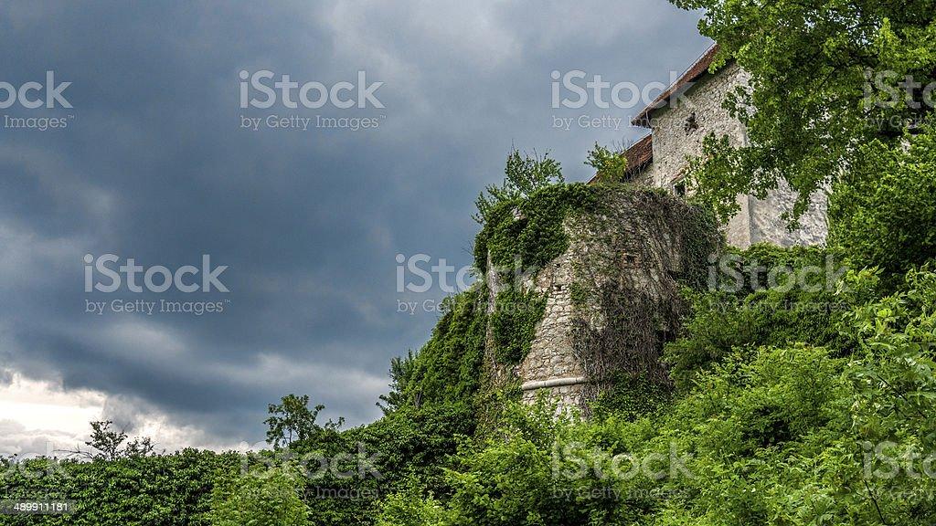 Abandoned overgrown European castle royalty-free stock photo