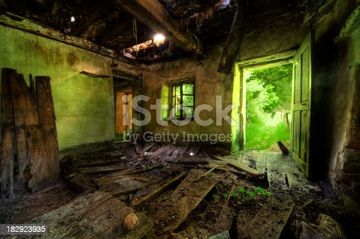 Green/yellow light is pouring in through the door and window of an old and abandoned overgrown home.HDR from 5 differently exposed images. Images were shot with a Sigma 8-16mm on 8mm