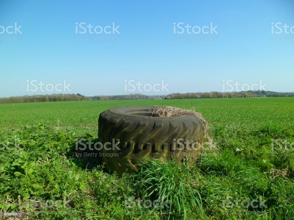 Abandoned Overgrown Tractor Tyre stock photo