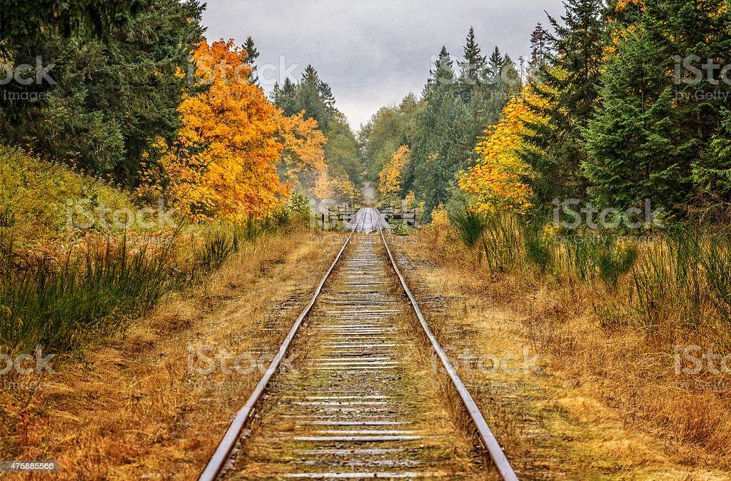 Abandoned railroad stock photo