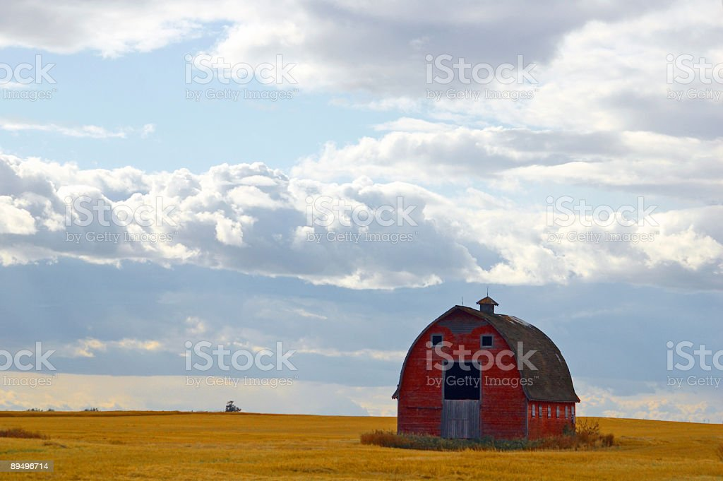 Abandoned Red Barn royalty free stockfoto