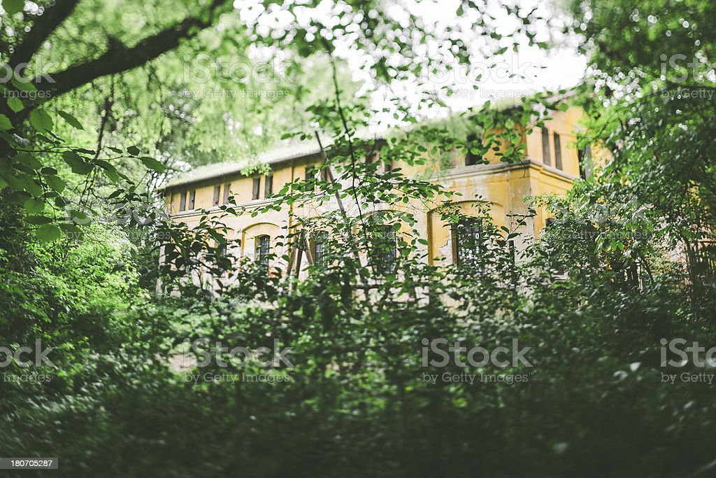 Abandoned Ruined Building in the forest royalty-free stock photo