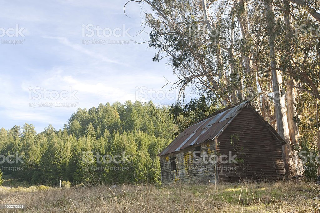 Abandoned rustic cabin royalty-free stock photo