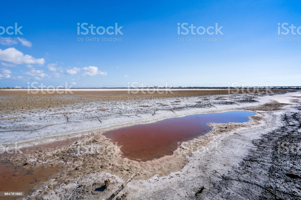Abandoned salt beach with incredible beautiful iron red color bittern, only can be seen in drought time in Tainan Taiwan. royalty-free stock photo