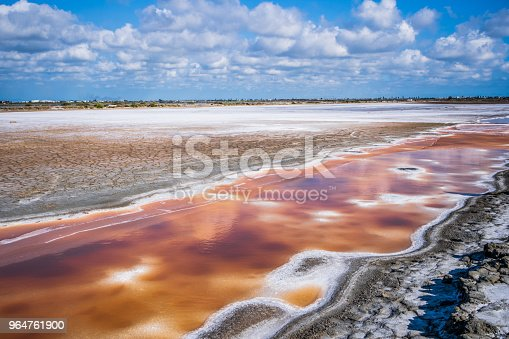 Abandoned Salt Beach With Incredible Beautiful Iron Red Color Bittern Only Can Be Seen In Drought Time In Tainan Taiwan Stock Photo & More Pictures of Abandoned