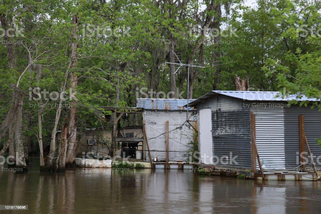 Abandoned Shack on Louisiana River Bayou Spanish Moss