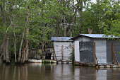 Abandoned Shack on Louisiana River Bayou Spanish Moss