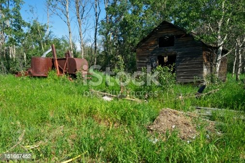 A derelict shed or barn with a rusty combine harvester to the left.  Scattered  junk and debris in the grass in front.  Situated in a  grove of small aspen trees.  Image taken in the afternoon in summer.  Rural scene in British Columbia
