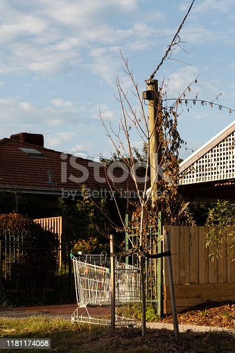 istock Abandoned Shopping Trolley On Suburban Nature Strip 1181174058