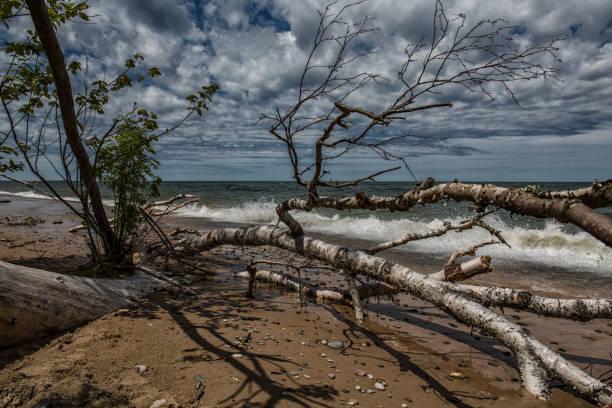 Abandoned shoreline on Lake Superior stock photo