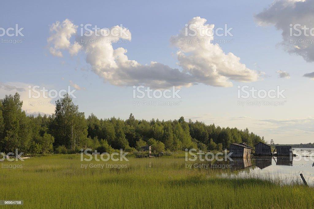 Abandoned slip docs on a lake shore royalty-free stock photo