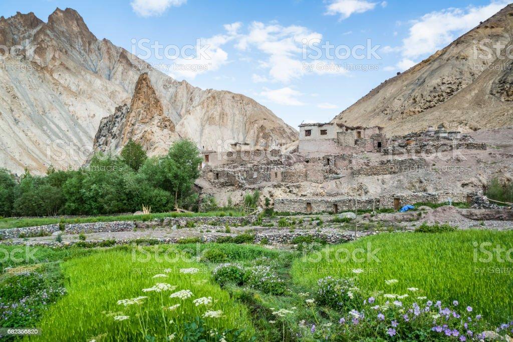 Övergivna sten hyddor längs den Markha dal trek (Ladakh) royaltyfri bildbanksbilder