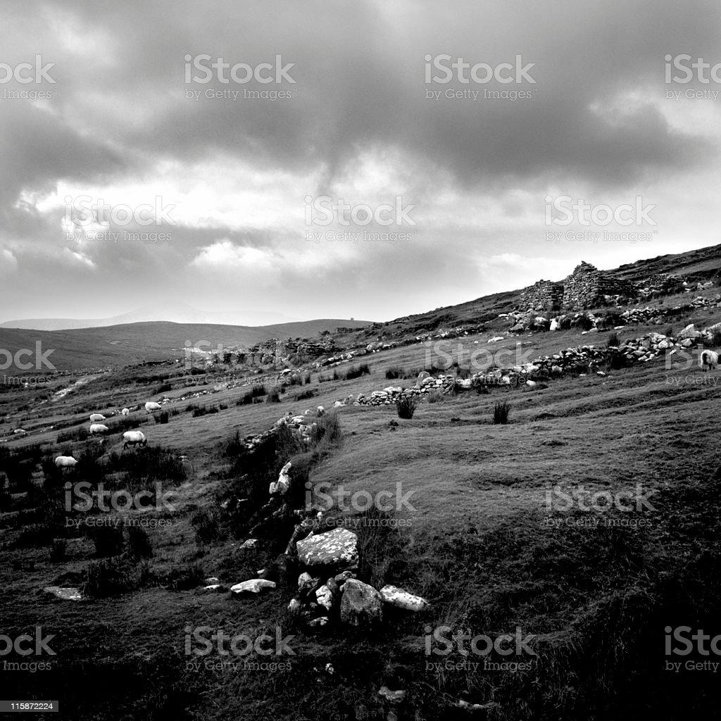 Abandoned Village 4 royalty-free stock photo