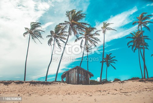 istock Abandoned wooden little house in beach 1169269836
