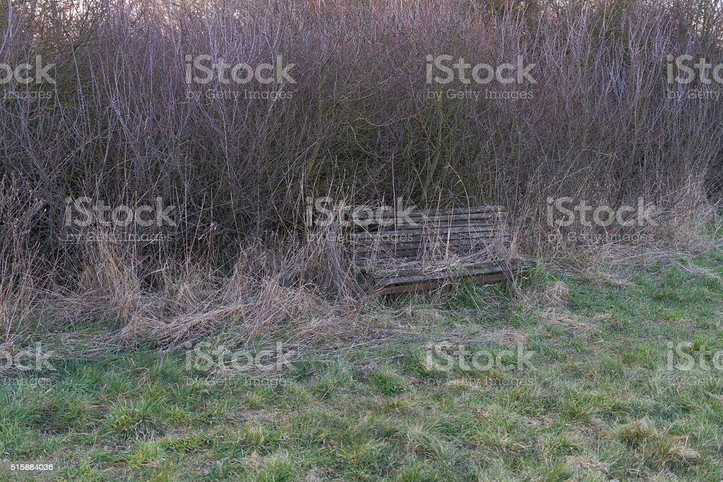 Abandoned Wooden Park Bench stock photo