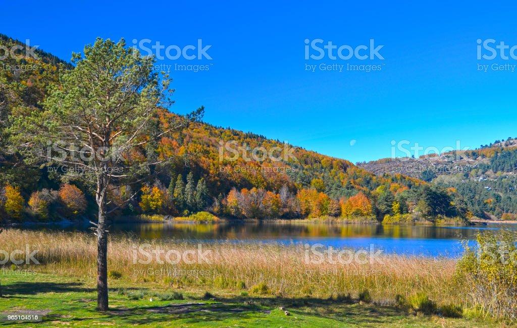 Abant Lake zbiór zdjęć royalty-free