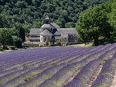 istock abbaye de senanque, abbey of senanque 1215174357