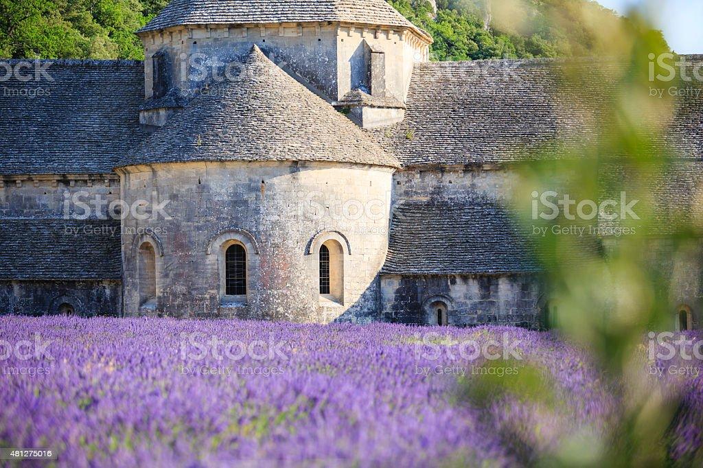 Abbaye Notre-Dame de Sénanque zbiór zdjęć royalty-free