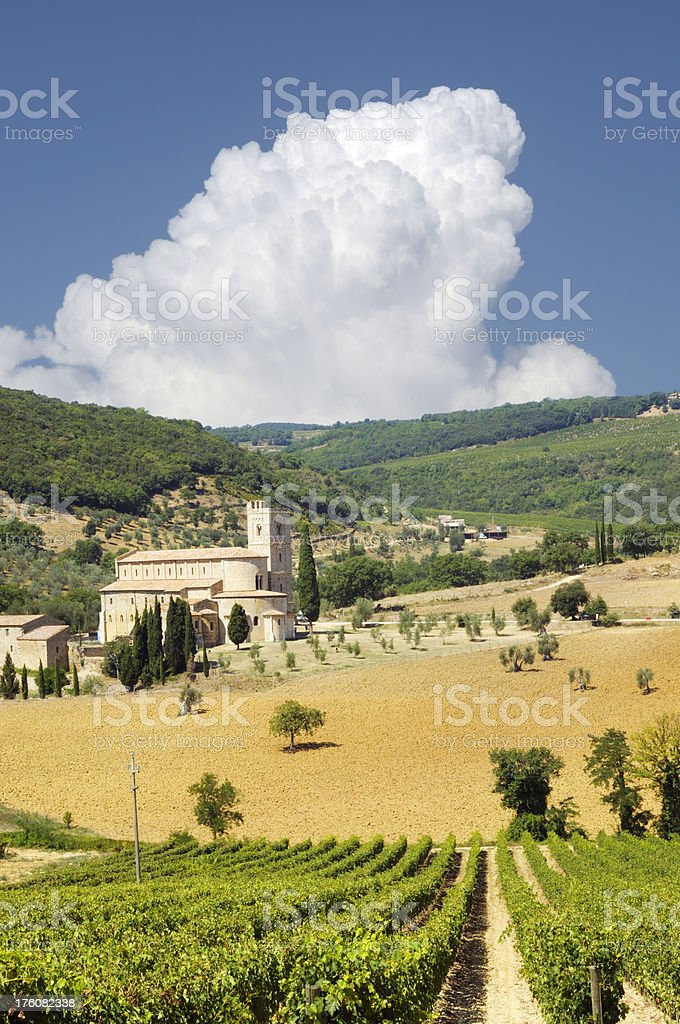 Abbey and Vineyard,Tuscany royalty-free stock photo