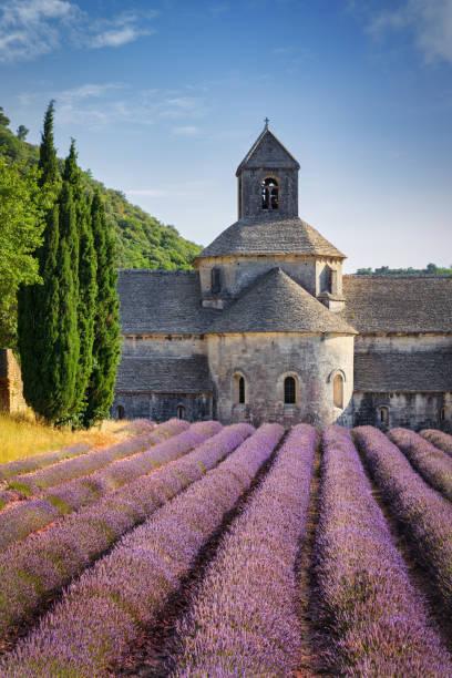 Abbey Notre-Dame de Sénanque Colorful Lavender Field Provence, France stock photo