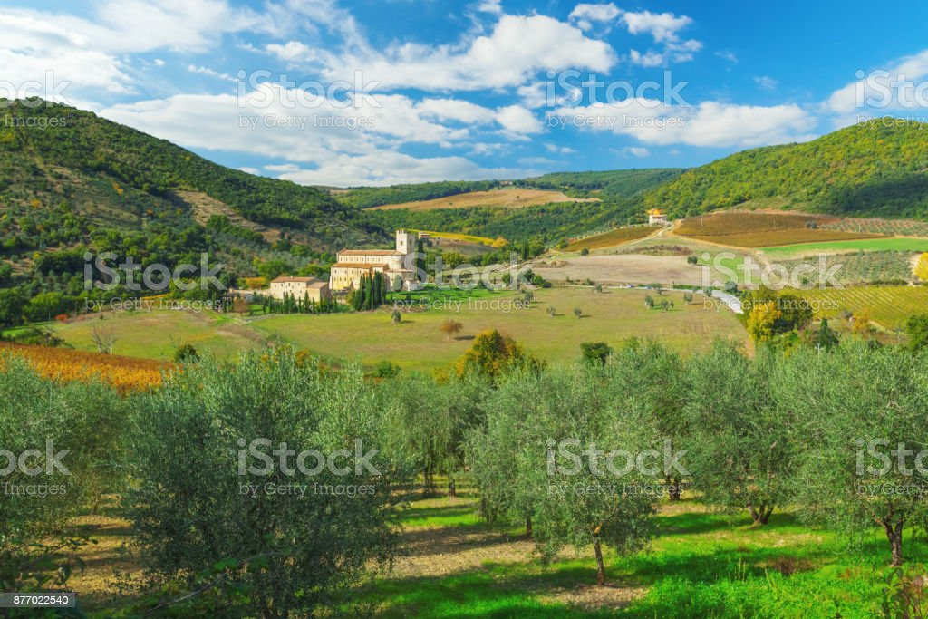Abbey of Sant'Antimo in Tuscany with olive trees in the foreground stock photo
