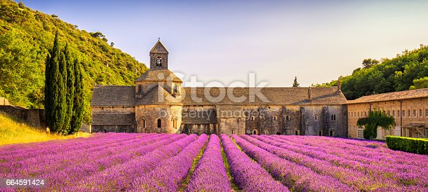 Abbey of Senanque and blooming rows lavender flowers panorama at sunset. Gordes, Luberon, Vaucluse, Provence, France, Europe.