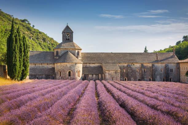 Abbeye de Senanque Lavender Field Provence in Summer France stock photo