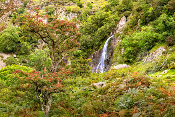 Aber Falls in Showdonia National Park stock photo