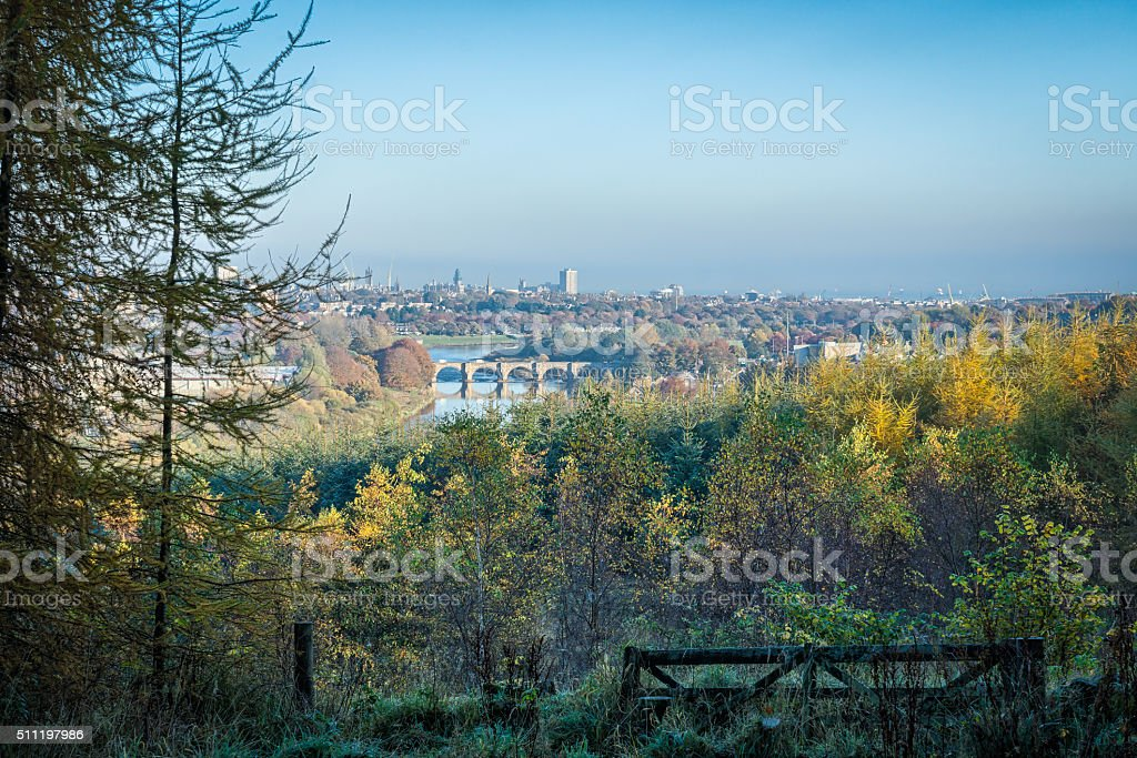 Aberdeen Through Trees stock photo