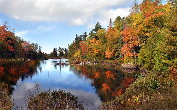 Ablaze with Color in Michigan Autumn is reflected in still waters on the Keweenaw Peninsula in Michigan.  Water is tinted with orange and yellow in a blaze of color. ablaze stock pictures, royalty-free photos & images