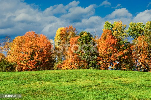 Autumn foliage glows with yellow, red and orange hues at the edge on a Peacham, Vermont meadow