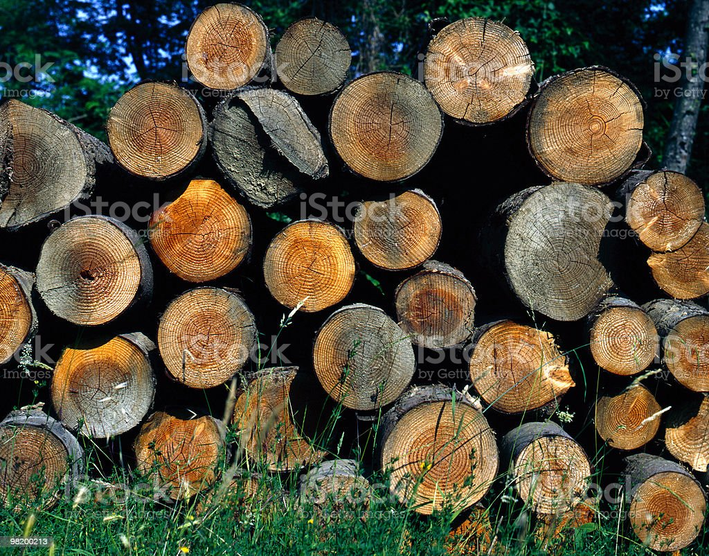 About Beautiful Tuscany: After the Logging, Timber Logs in Woodstack royalty-free stock photo