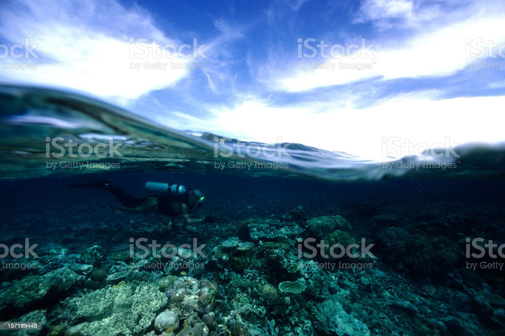 Above and below action shot of an underwater diver royalty-free stock photo