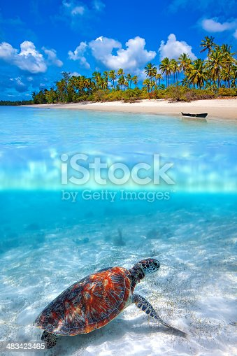 istock Above and Below 483423465