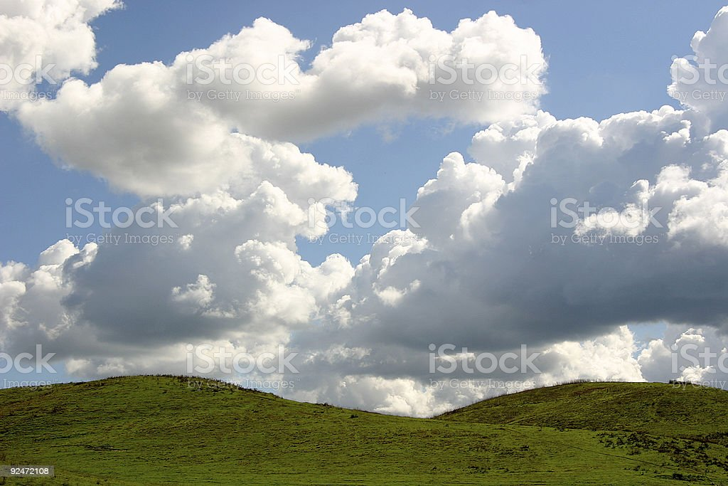 Above the Grass royalty-free stock photo