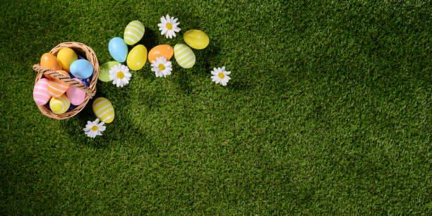 멀티 컬러의 상위 뷰 위에 색칠 부활절 달걀 봄이와 푸른 잔디에 데이지 꽃 - 부활절 달걀 뉴스 사진 이미지