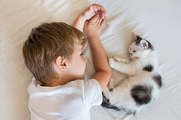 Above view of child and kitten resting on the bed picture id611767628?b=1&k=6&m=611767628&s=612x612&w=0&h=r49pscu8cntnn8yk4cfkjv xqvmzukotcclvyj7k6kq=