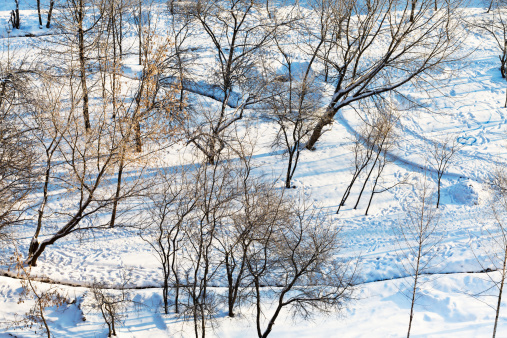 above view of snowy urban park in winter