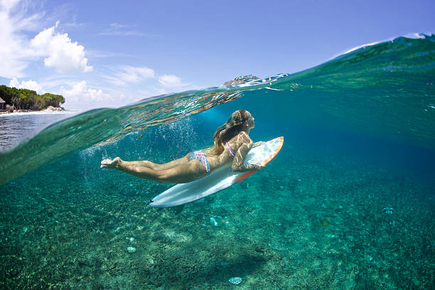 5569bcbf3bfec Above/Below duckdive surfer girl stock photo. diving duck ...