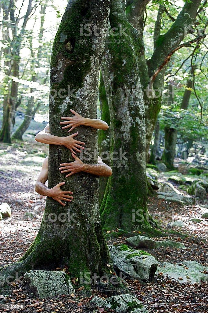 Abrazo a la naturaleza stock photo