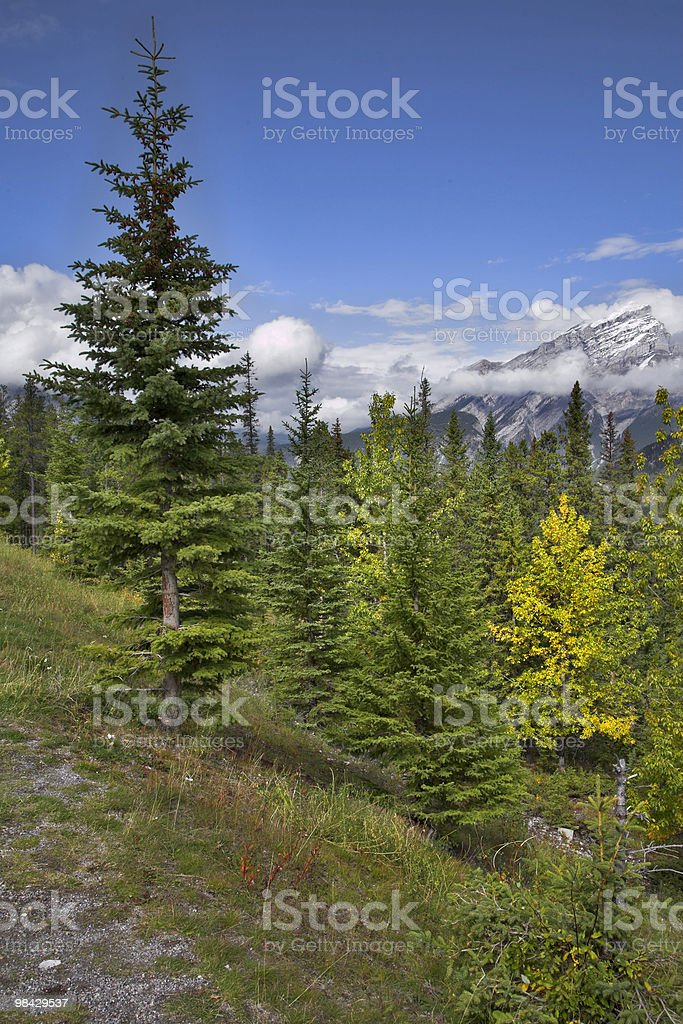Abrupt hillside. royalty-free stock photo