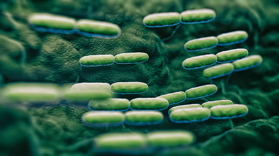 abs Lactobacillus Bulgaricus Bacteria - 3d rendered microbiology image. Medical research, health-care concept.