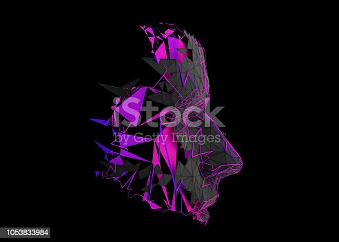 istock Abstract 3D Rendering of Polygonal Human Face 1053833984