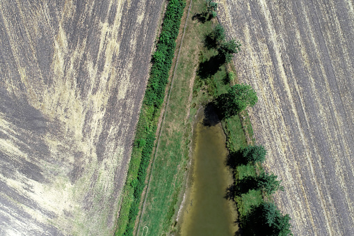 Abstract aerial view of the pointed end of a fishing pond with a row of trees next to harvested farmland