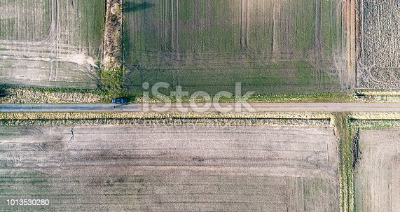 1095367134 istock photo Abstract aerial view, vertical view of a straight dirt road between fields, black car on the way 1013530280