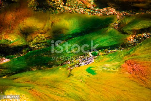 istock Abstract and colorful. underwater algae with splendid colors of a source of fresh water in the mountains, clear, transparent and uncontaminated. Italy. textures and backgrounds 944875572