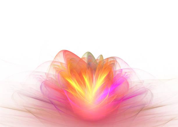 abstrakte kunst-fraktal-hintergrund - lotus zeichnung stock-fotos und bilder